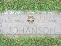Evelyn Adele <i>Bingham</i> Johanson