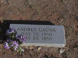 Andres Gauna