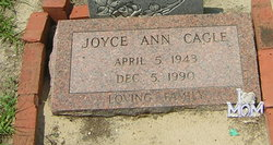 Joyce Ann <i>Eiland</i> Cagle