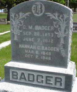 Christian M Badger