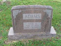 Joel Kenyon Adams