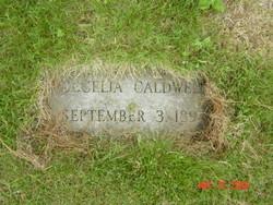 Cecelia Celie <i>Palmer</i> Caldwell