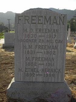 Moses D. Freeman