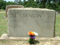 Sarah Elizabeth <i>Murray</i> Benson