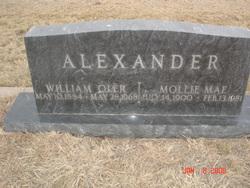 Mollie Mae <i>Brinkley</i> Alexander