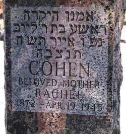Rachel Cohen