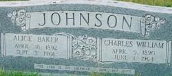 Charles William Johnson