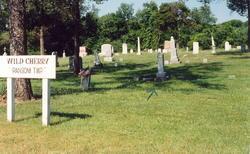 Wild Cherry Cemetery