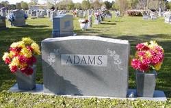 Dorothy D Adams