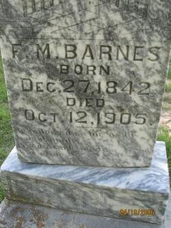 Pvt Francis Marion Barnes