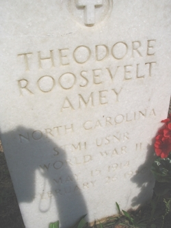 Theodore Roosevelt Amey