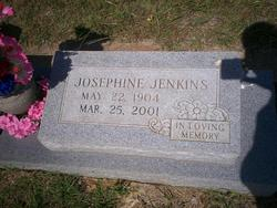 Josephine <i>Johnson</i> Jenkins