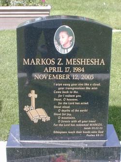Markos Z. Mark Meshesha
