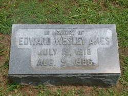 Edward Wesley Ames
