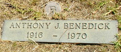 Anthony John Benedick