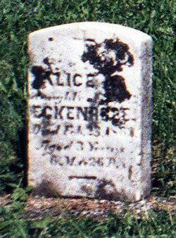Alice A Eckenrode