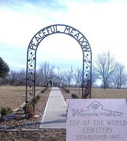 Wayside Waifs Top of the World Cemetery