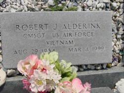 Robert J Alderink