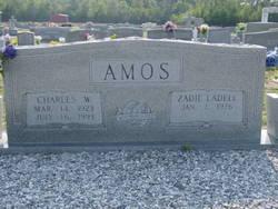 Zadie Amos