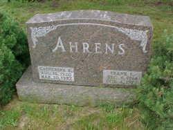 Frank Ahrens