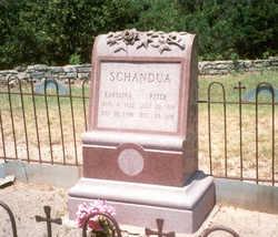 Peter Schandua