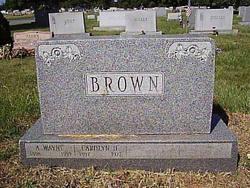 A. Wayne Brown