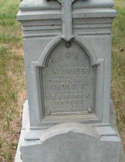 Mary Helen <i>Morgan</i> Briggs