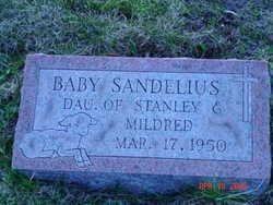 Baby Sandelius