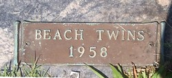 Twin Babies Beech