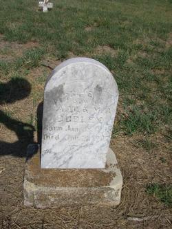 Virgil E. Dudley