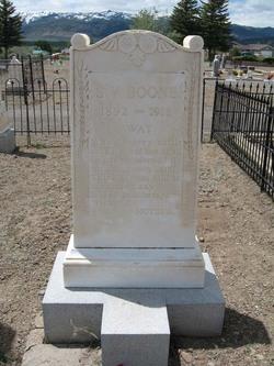 S. V. Boone