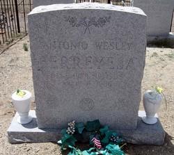 Antonio Wesley Berreyesa
