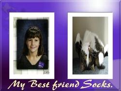 Socks Franze