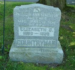 Patricia Ann Keneston