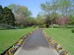 Cementerio Brit�nico