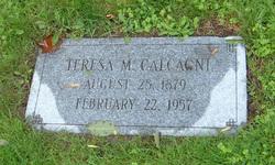 Teresa M Calcagni