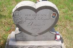 Joseph Wayne Brown