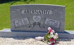 Carrie Arizona <i>Addis</i> Abernathy