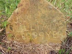 Jane <i>Bell</i> Williams