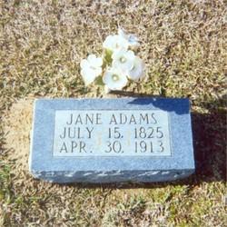Jane <i>Herod</i> Adams