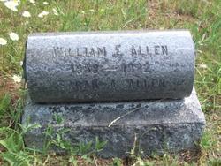 Sarah Ann <i>Swinehart</i> Allen