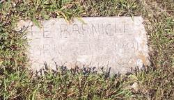 Lee Barnicle