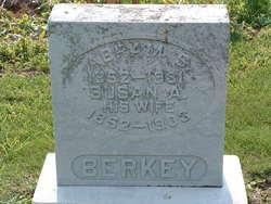 Abram S. Berkey
