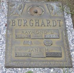 Raymond L Burghardt