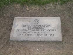 Arvid Anderson