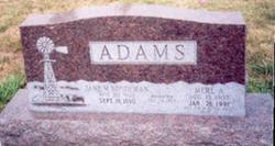 Jane M. <i>Boudeman</i> Adams