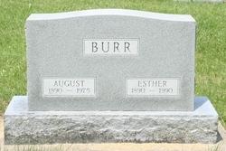 August Burr