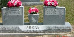 David E Abram