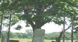 Illinois Chapel Cemetery