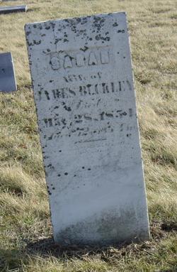 Sarah Sally <i>Lincoln</i> Buckley